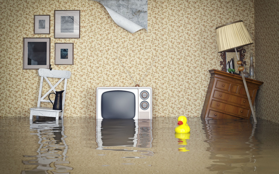 how-can-you-tell-if-your-basement-is-leaking